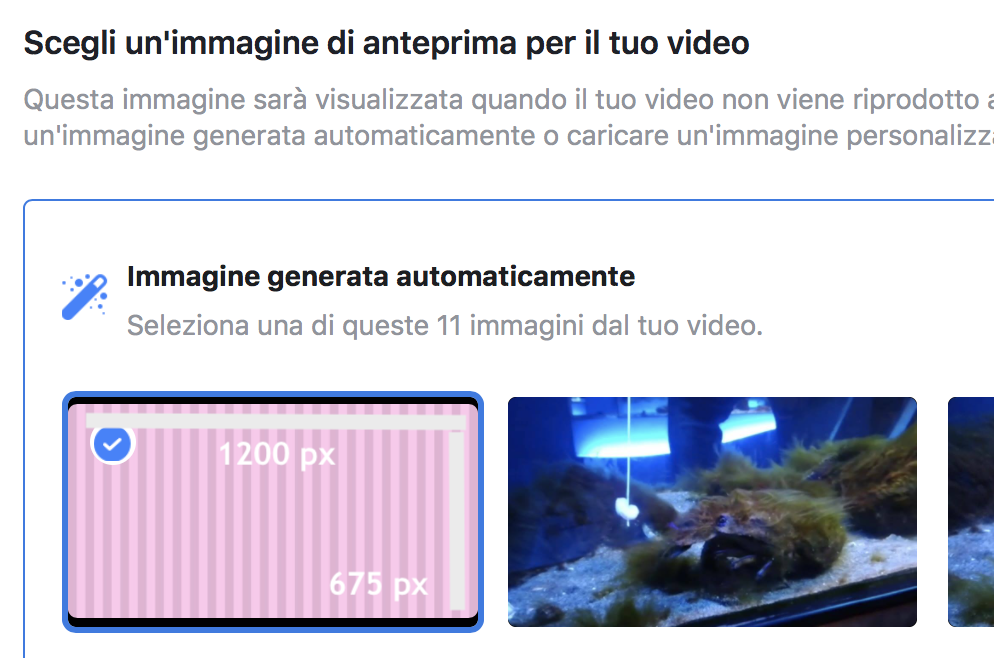 dimensione anteprima video facebook